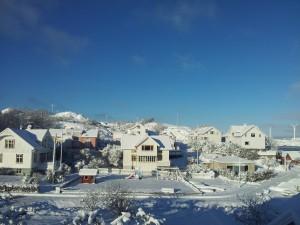 natur_vinter2016_b